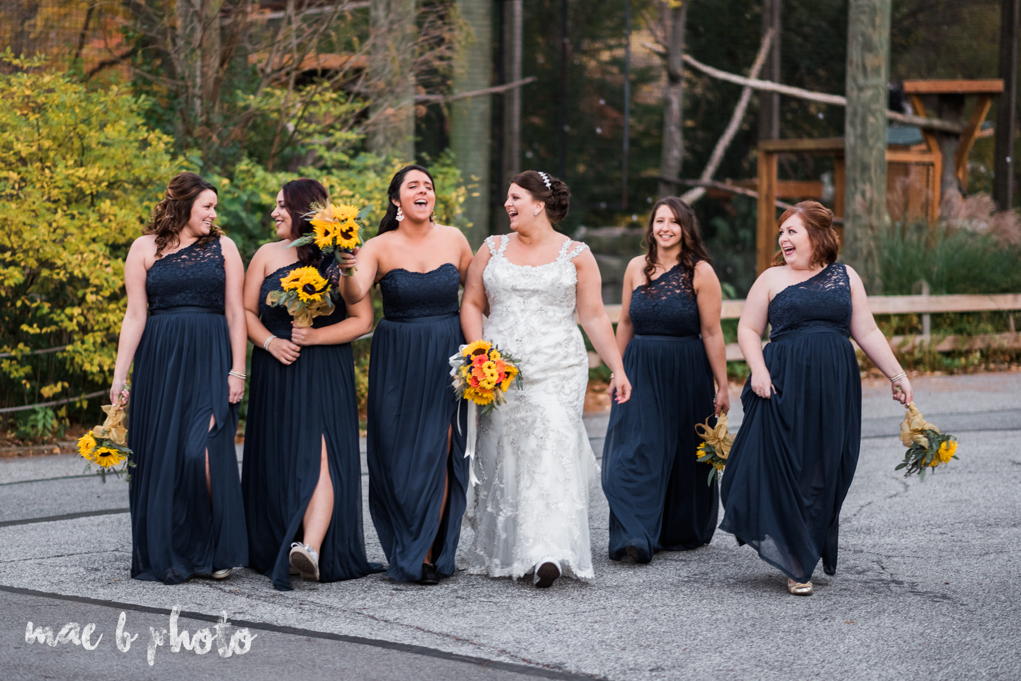 kaylynn & matt's fall zoo wedding at the cleveland metroparks zoo in cleveland ohio photographed by mae b photo-49.jpg