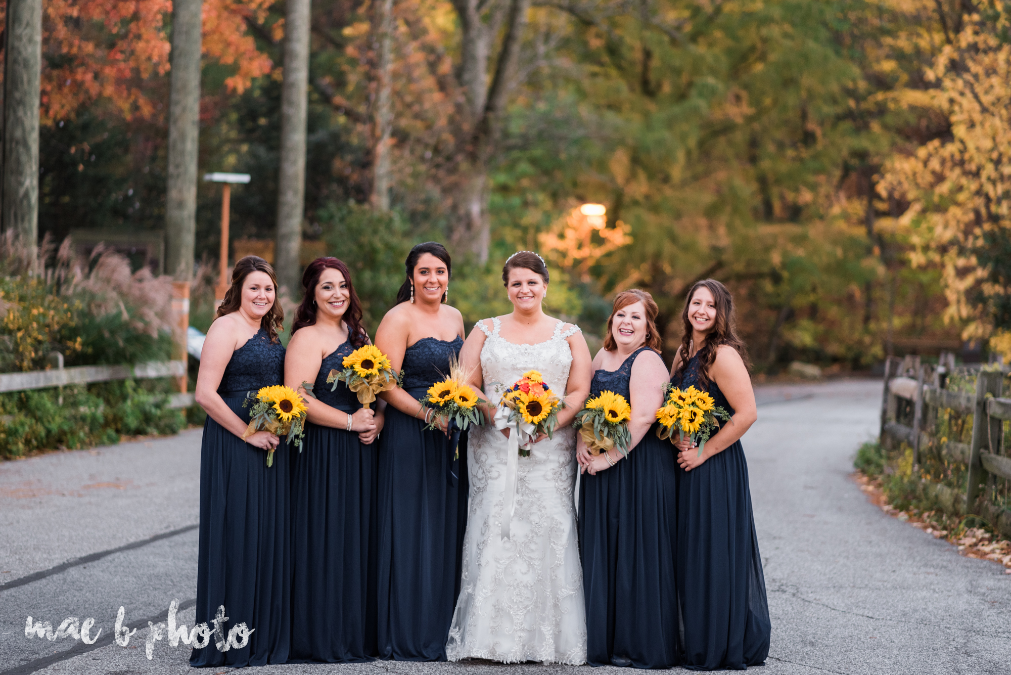 kaylynn & matt's fall zoo wedding at the cleveland metroparks zoo in cleveland ohio photographed by mae b photo-46.jpg