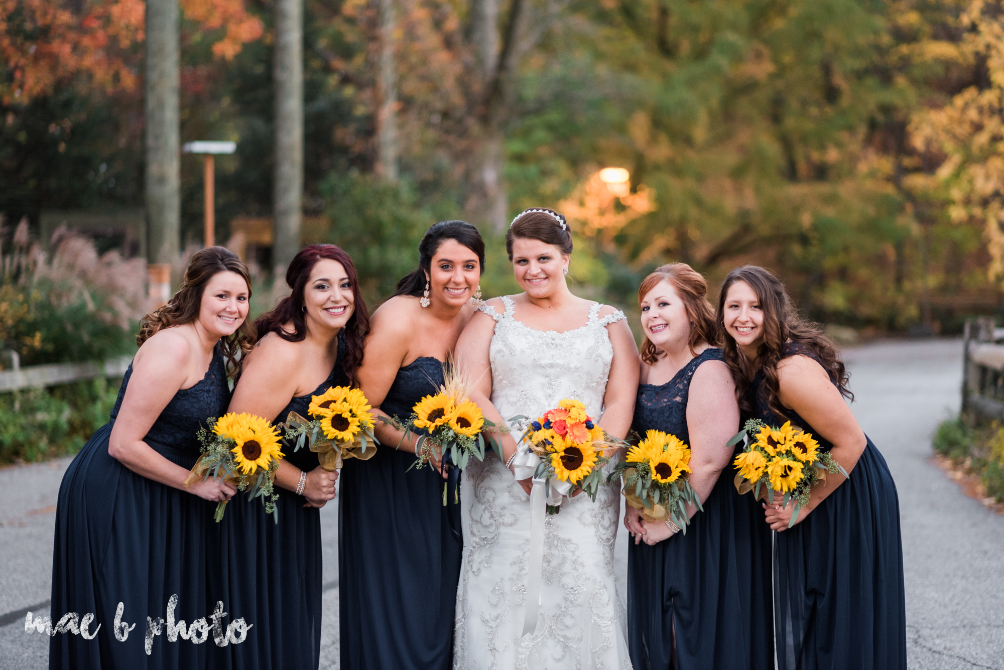 kaylynn & matt's fall zoo wedding at the cleveland metroparks zoo in cleveland ohio photographed by mae b photo-47.jpg