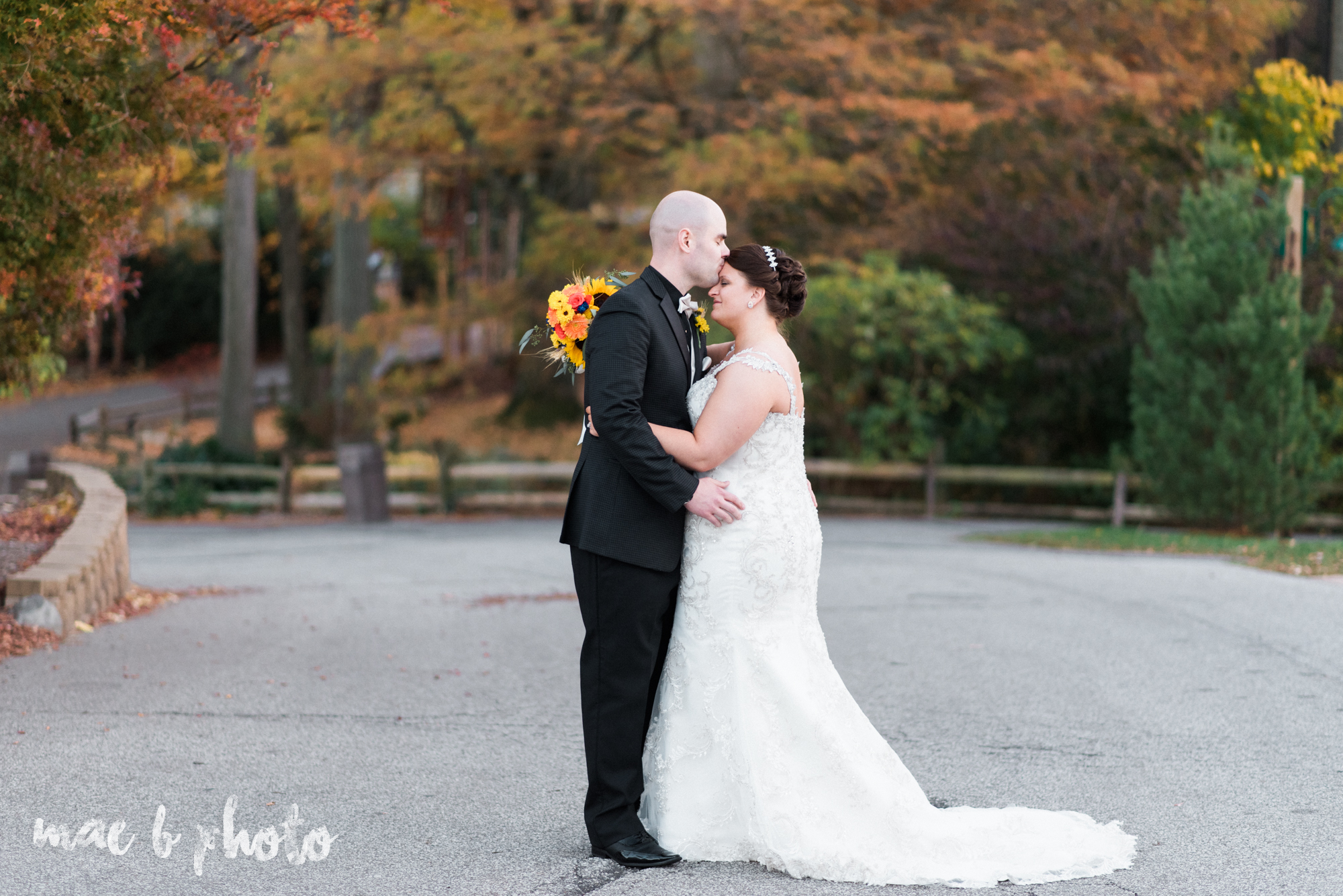 kaylynn & matt's fall zoo wedding at the cleveland metroparks zoo in cleveland ohio photographed by mae b photo-27.jpg