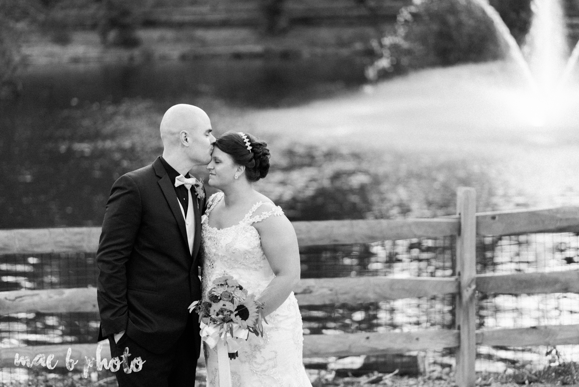 kaylynn & matt's fall zoo wedding at the cleveland metroparks zoo in cleveland ohio photographed by mae b photo-53.jpg