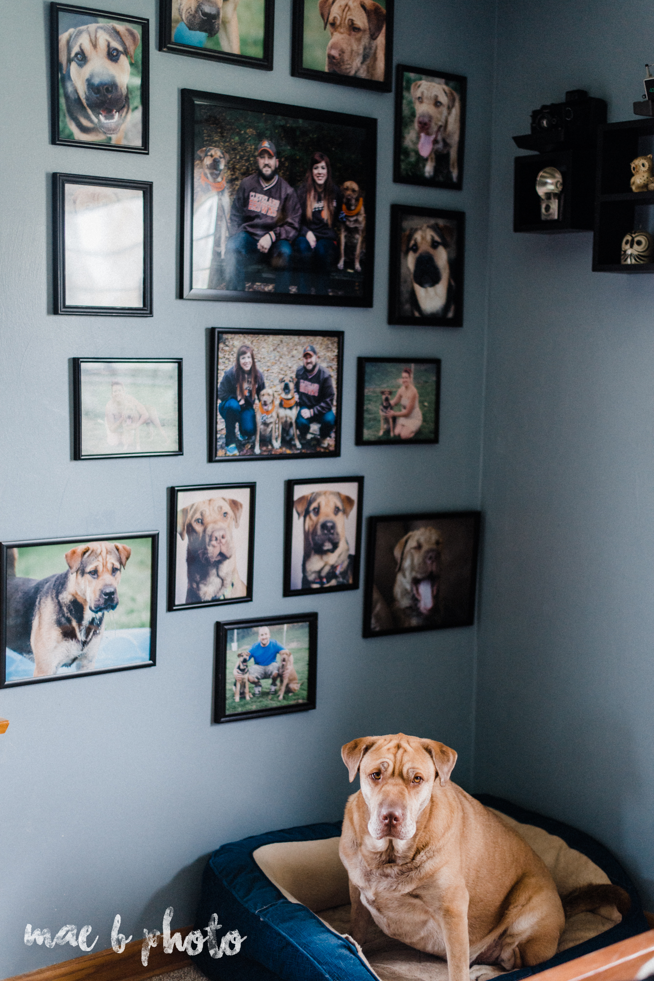 how to hang a wall collage by mae b photo-3.jpg