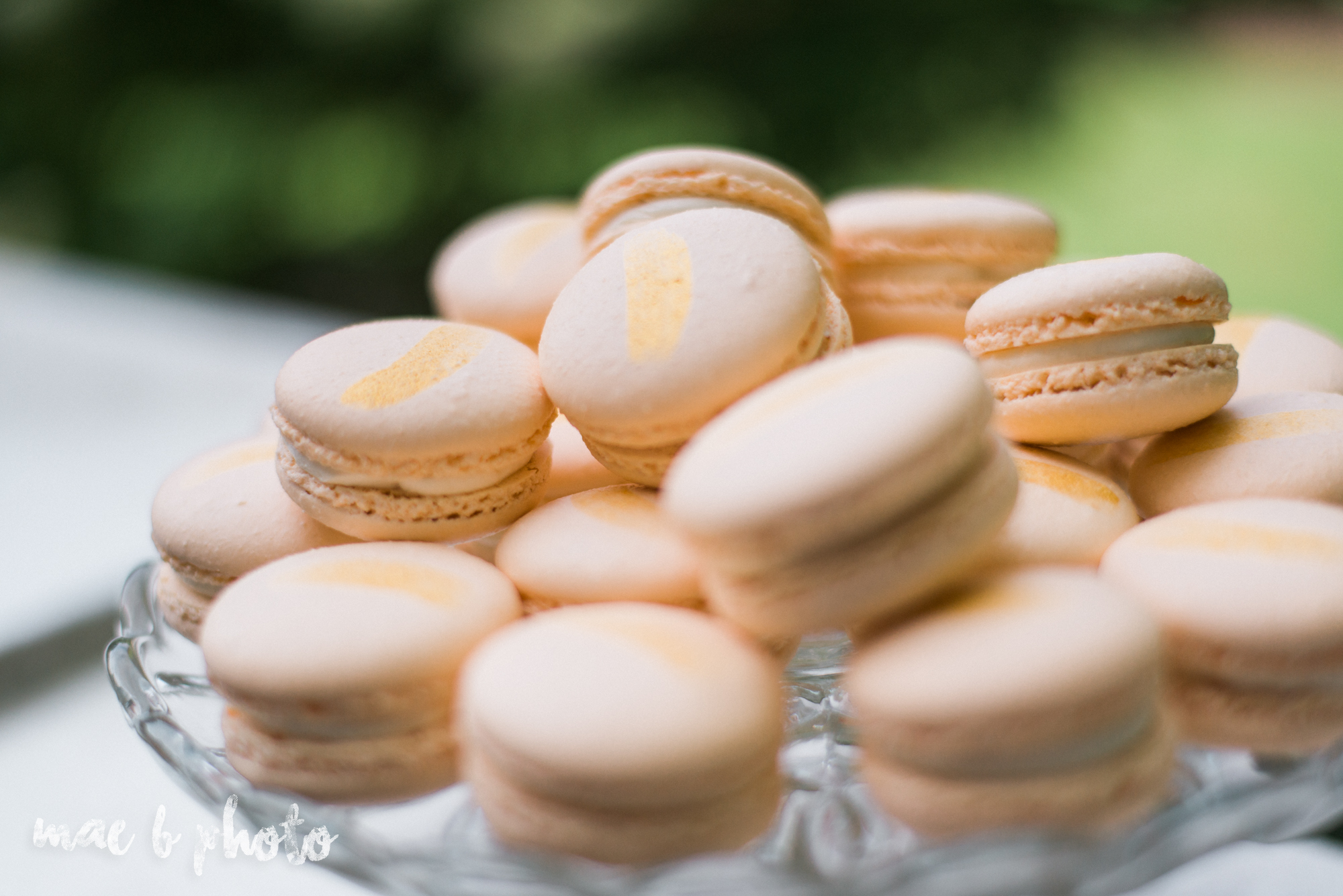 classic romantic summer wedding shoot at the mooreland mansion in cleveland ohio photographed by youngstown wedding photographer mae b photo-12.jpg