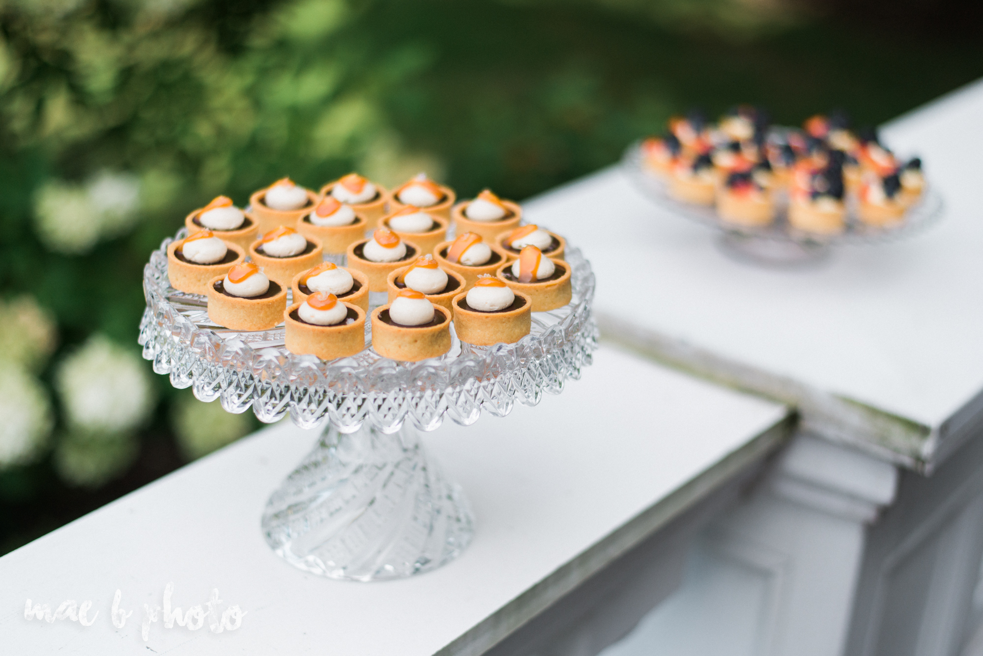 classic romantic summer wedding shoot at the mooreland mansion in cleveland ohio photographed by youngstown wedding photographer mae b photo-13.jpg