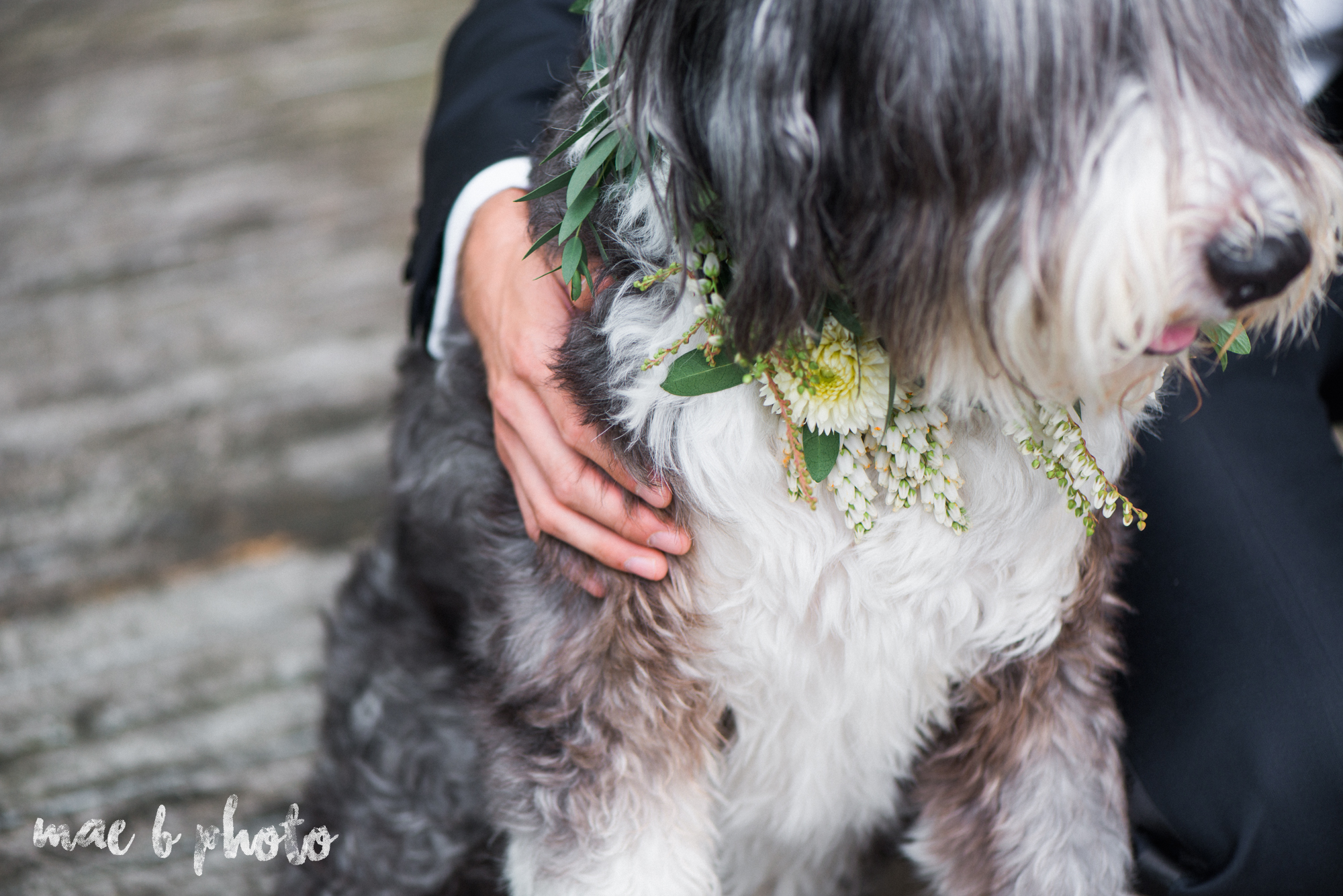 classic romantic summer wedding shoot at the mooreland mansion in cleveland ohio photographed by youngstown wedding photographer mae b photo-53.jpg