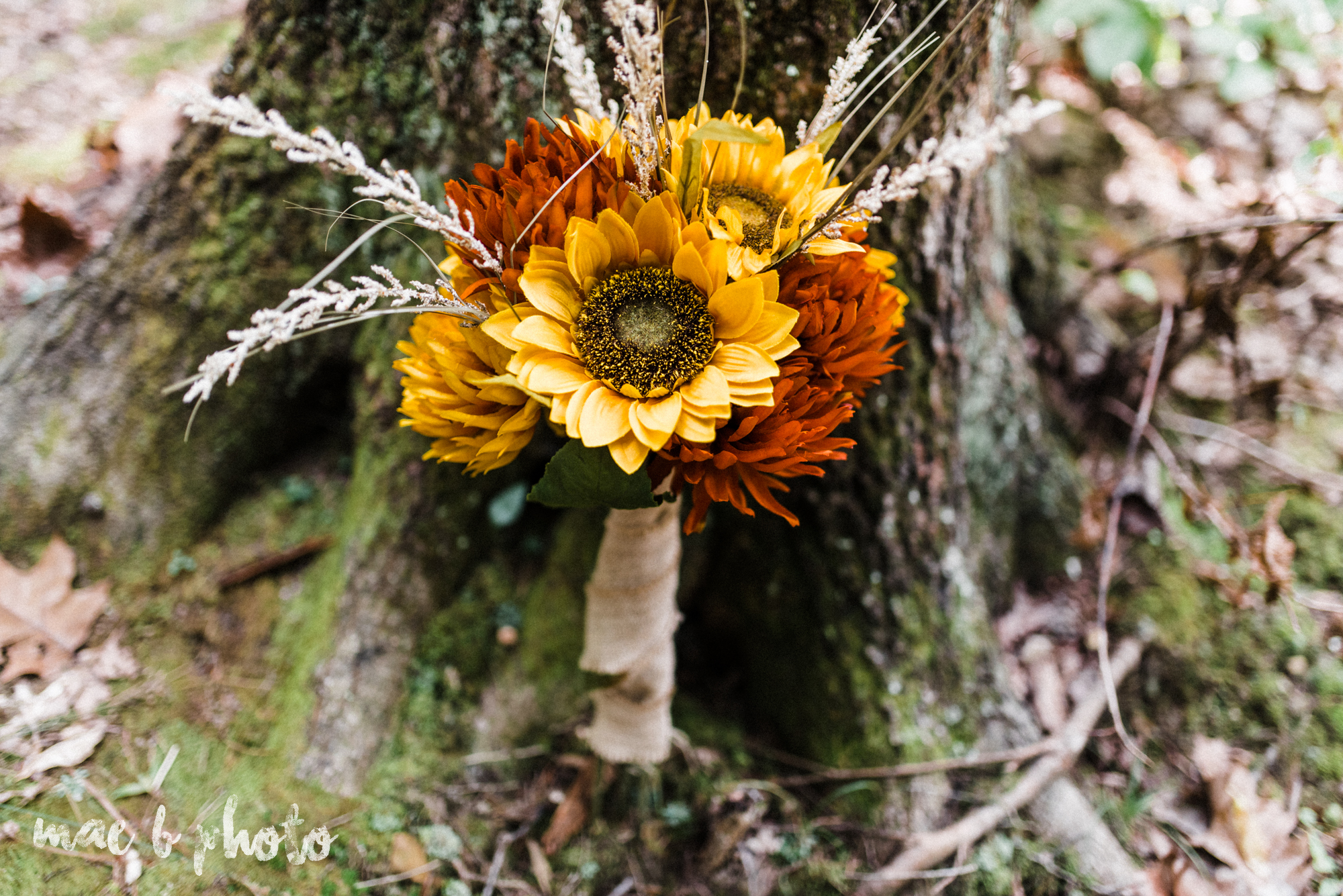 bobbi and pat's intimate fall cabin elopement in hocking hills old man's cave and rock house in logan ohio photographed by youngstown wedding photographer mae b photo-18.jpg