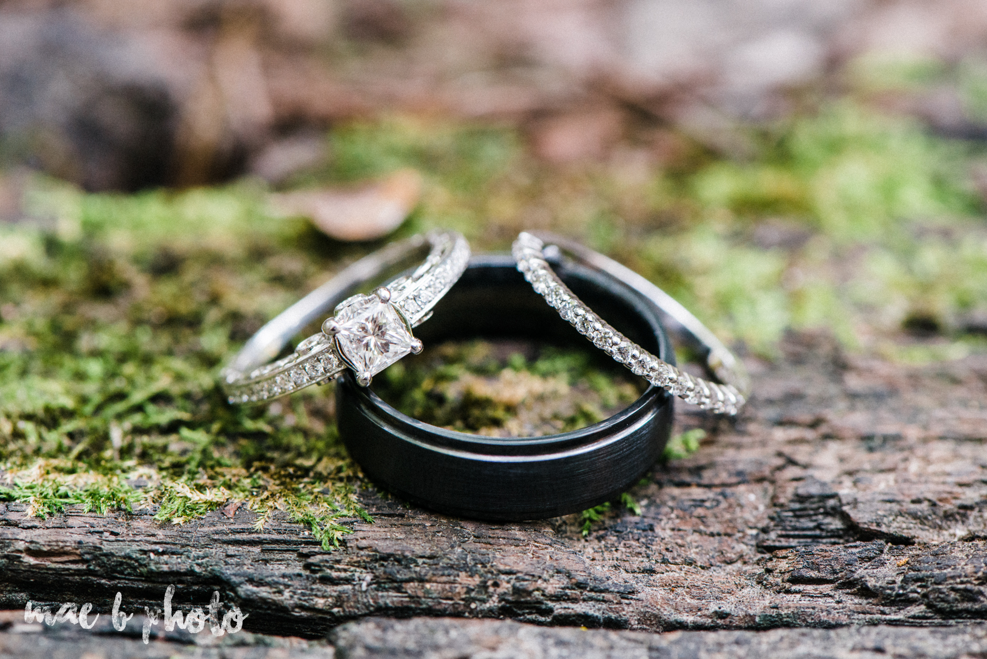 bobbi and pat's intimate fall cabin elopement in hocking hills old man's cave and rock house in logan ohio photographed by youngstown wedding photographer mae b photo-22.jpg