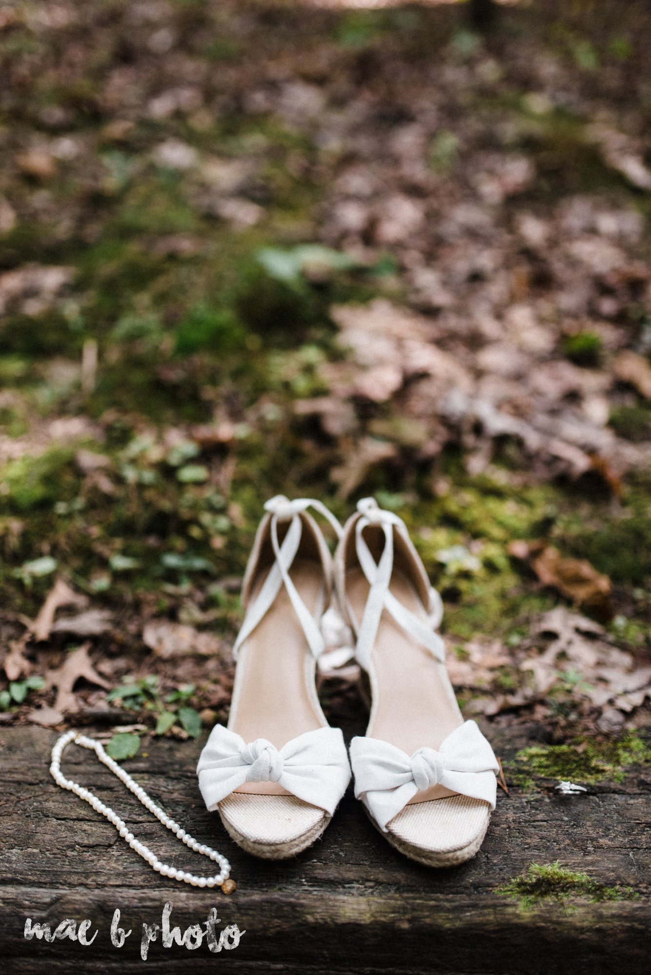 bobbi and pat's intimate fall cabin elopement in hocking hills old man's cave and rock house in logan ohio photographed by youngstown wedding photographer mae b photo-10.jpg
