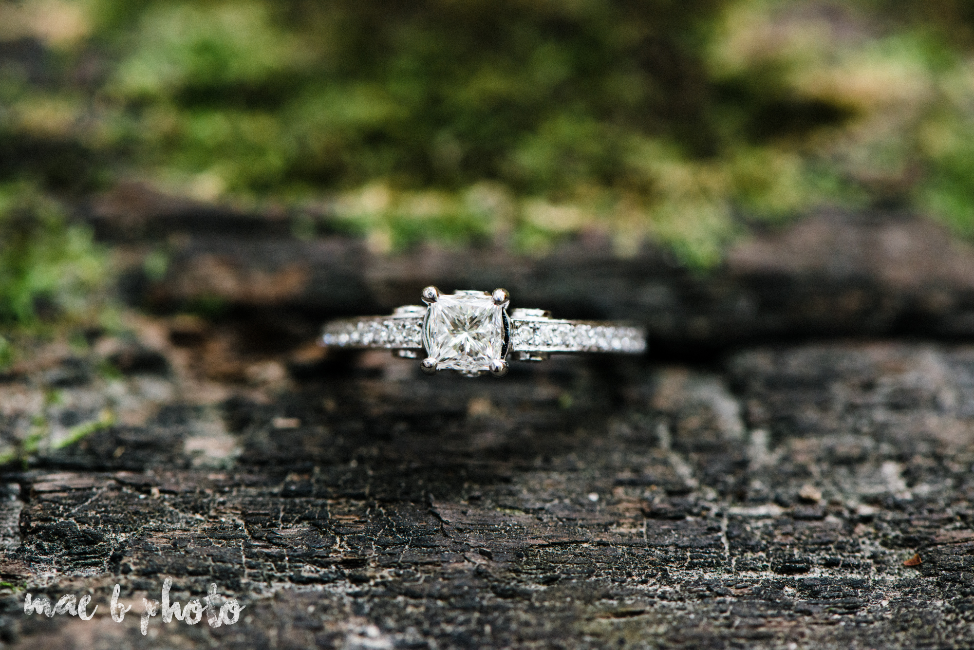 bobbi and pat's intimate fall cabin elopement in hocking hills old man's cave and rock house in logan ohio photographed by youngstown wedding photographer mae b photo-11.jpg