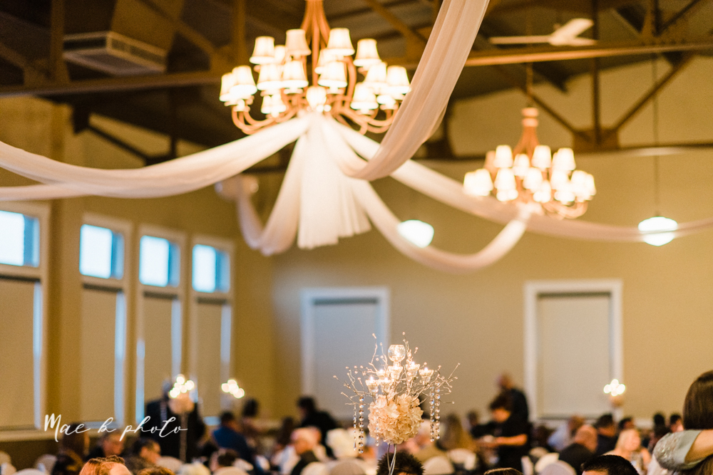 megan and angie's summer disney wedding at union tower and the hippodrome in warren ohio photographed by youngstown wedding photographer mae b photo-153.jpg