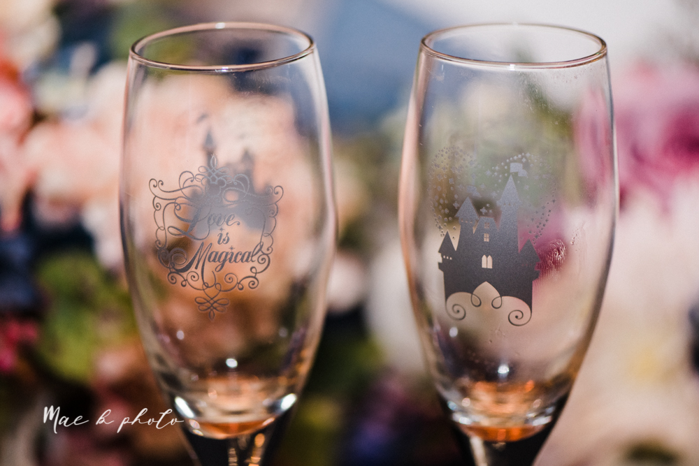 megan and angie's summer disney wedding at union tower and the hippodrome in warren ohio photographed by youngstown wedding photographer mae b photo-191.jpg