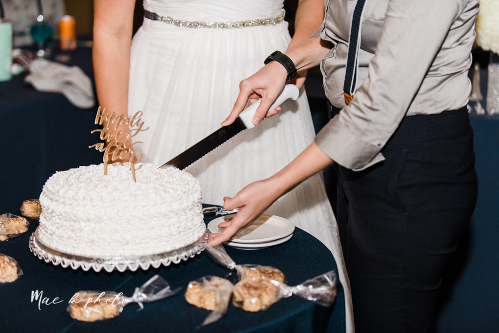 megan and angie's summer disney wedding at union tower and the hippodrome in warren ohio photographed by youngstown wedding photographer mae b photo-160.jpg