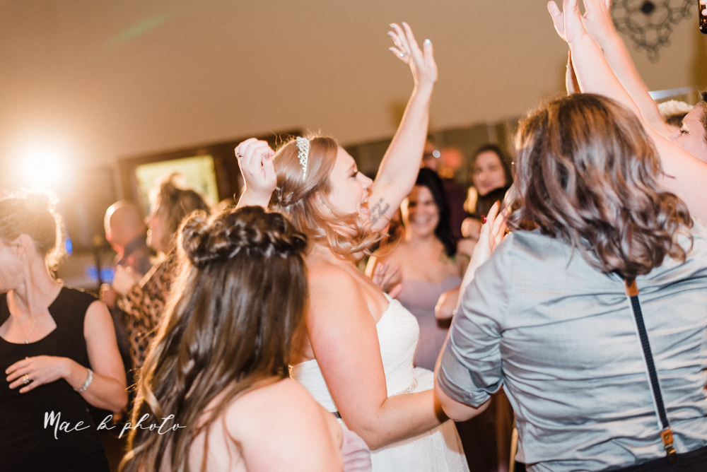 megan and angie's summer disney wedding at union tower and the hippodrome in warren ohio photographed by youngstown wedding photographer mae b photo-173.jpg