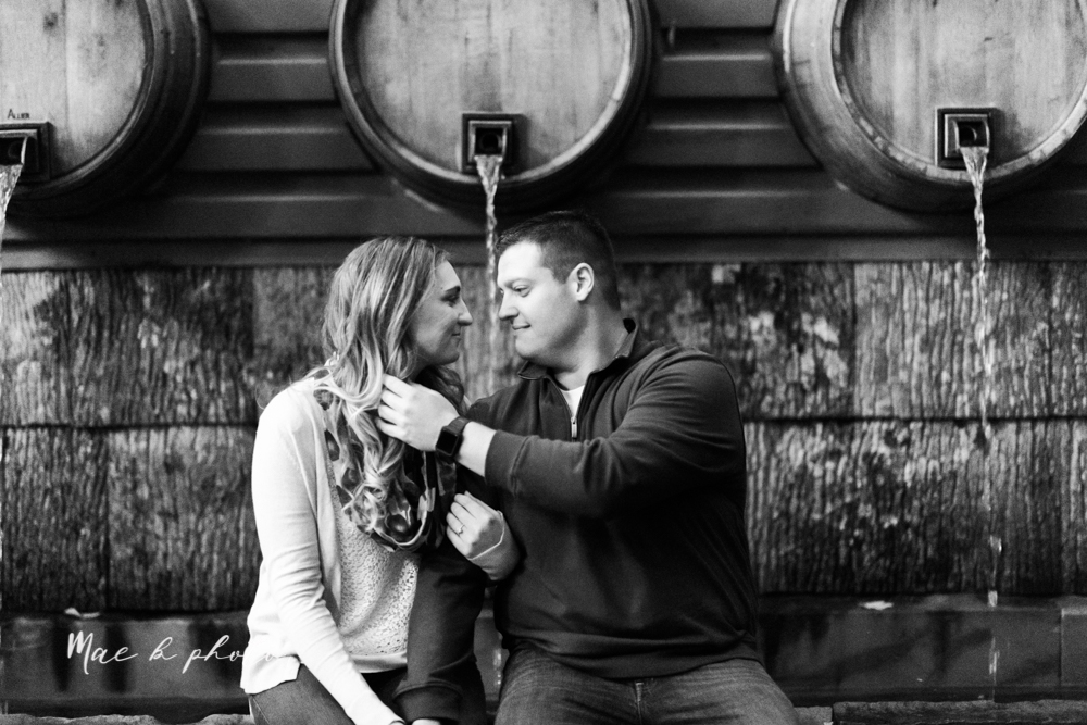 erin and shawn's fall Cleveland winery engagement session at sapphire creek winery photographed by youngstown wedding photographer mae b photo-55.jpg