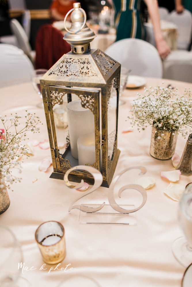 casey and matt's big fun italian fall wedding at st robert's church in cortland ohio and avion on the water in youngstown ohio and fellows riverside gardens in mill creek park photographed by youngstown wedding photographer mae b photo -202.jpg
