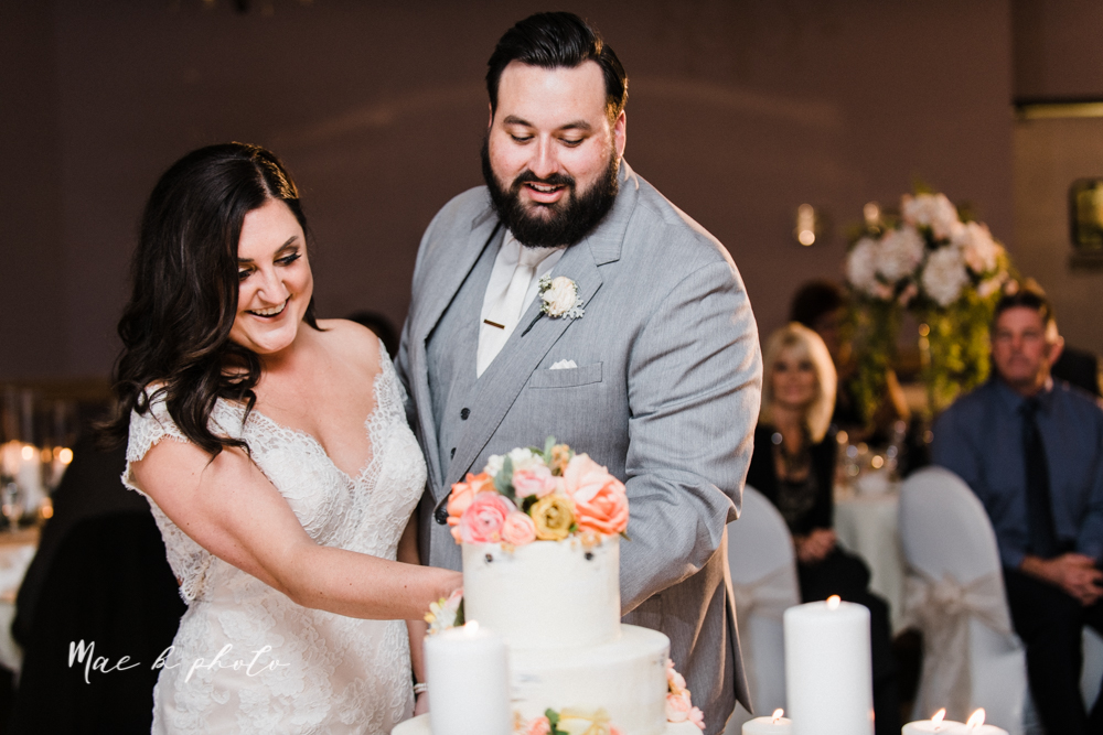 casey and matt's big fun italian fall wedding at st robert's church in cortland ohio and avion on the water in youngstown ohio and fellows riverside gardens in mill creek park photographed by youngstown wedding photographer mae b photo -181.jpg