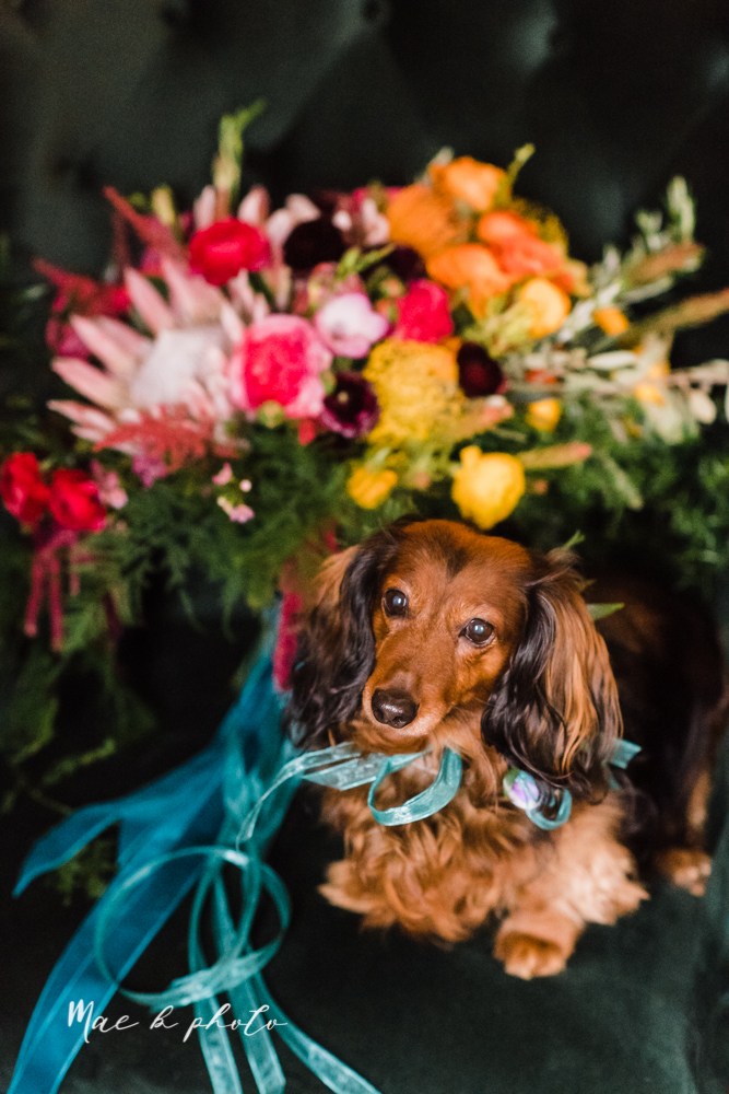 kaitlin and brad's offbeat winter harry potter the hobbit lord of the rings themed wedding at mapleside lodge in brunswick ohio photographed by youngstown wedding photographer mae b photo-22.jpg