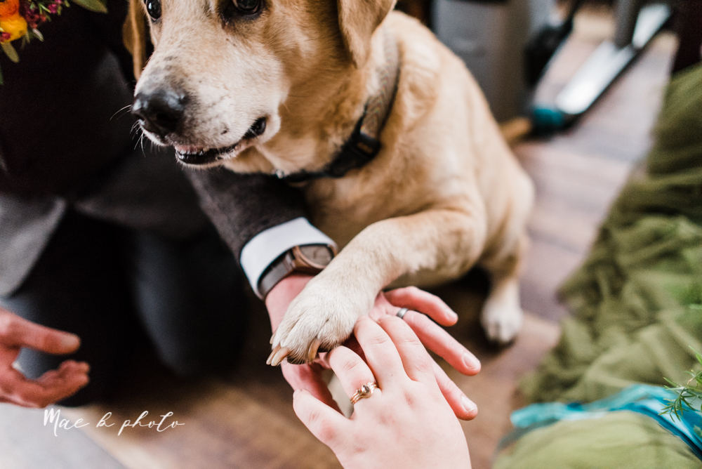 kaitlin and brad's offbeat winter harry potter the hobbit lord of the rings themed wedding at mapleside lodge in brunswick ohio photographed by youngstown wedding photographer mae b photo-40.jpg