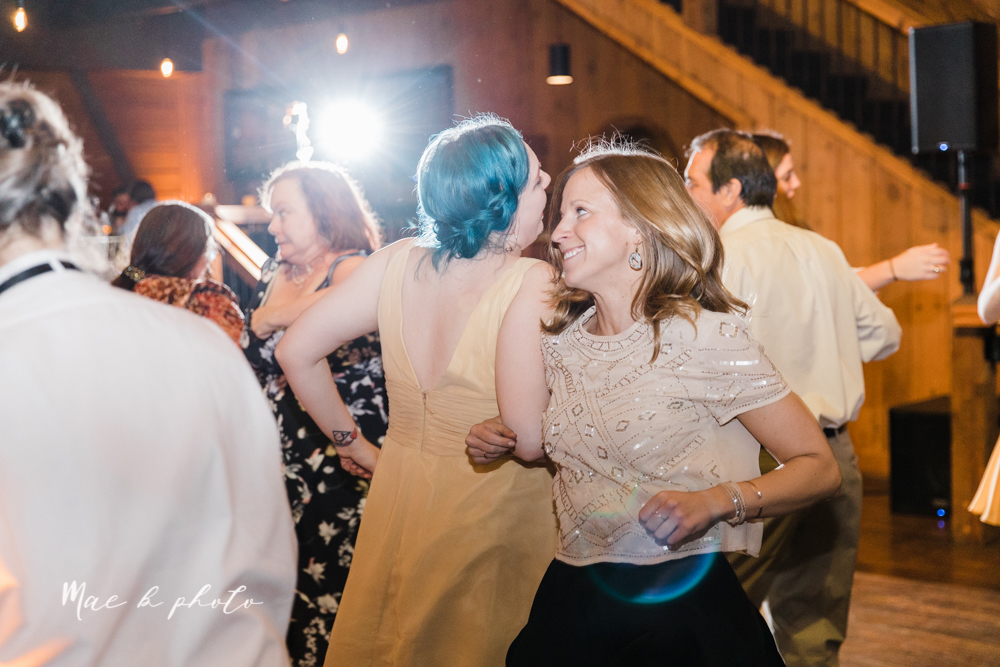 kaitlin and brad's offbeat winter harry potter the hobbit lord of the rings themed wedding at mapleside lodge in brunswick ohio photographed by youngstown wedding photographer mae b photo-243.jpg