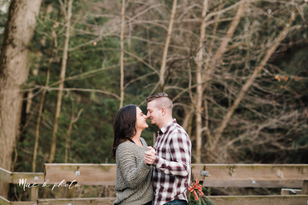shelby and tyler's winter engagement session in northeast ohio at the cinderella bridge silver bridge and lanterman's mill in mill creek park in youngstown ohio photographed by youngstown wedding photographer mae b photo-45.jpg