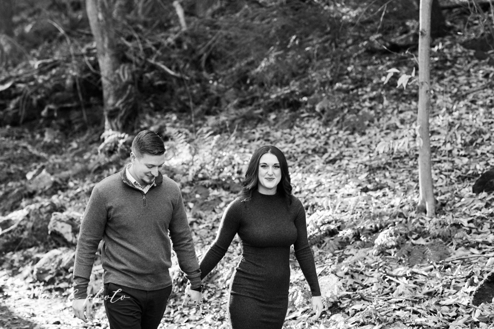shelby and tyler's winter engagement session in northeast ohio at the cinderella bridge silver bridge and lanterman's mill in mill creek park in youngstown ohio photographed by youngstown wedding photographer mae b photo-19.jpg