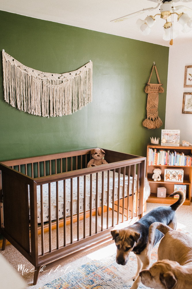 earthy gender neutral woodsy woodland themed nursery with game of thrones, guardians of the galaxy, diy crafts, where the wild things are and photography details and decor photographed by youngstown wedding photographer mae b photo-17.jpg