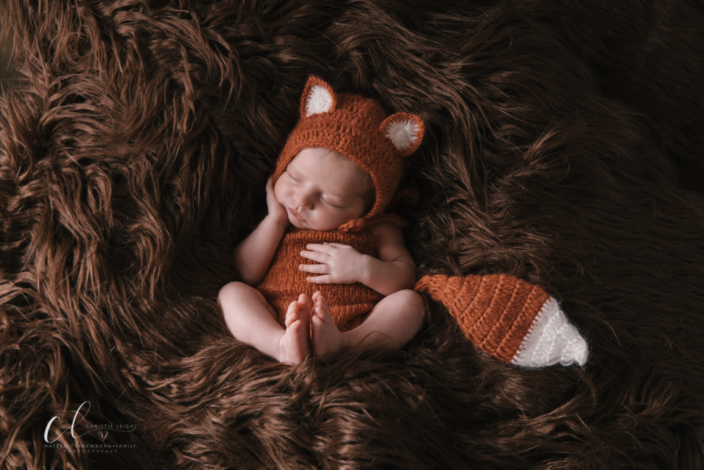 Baby_Boy_Earthy_Woodland_Creature_Themed_Newborn_Session_by_Youngstown_Warren_Ohio_Newborn_Photographer_Christie_Leigh_Photo (13 of 39).JPG