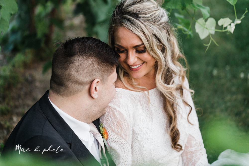 courtney and andy's elegant vintage summer vineyard wedding at the vineyards at pine lake in columbiana ohio photographed by youngstown wedding photographer mae b photo-455.jpg