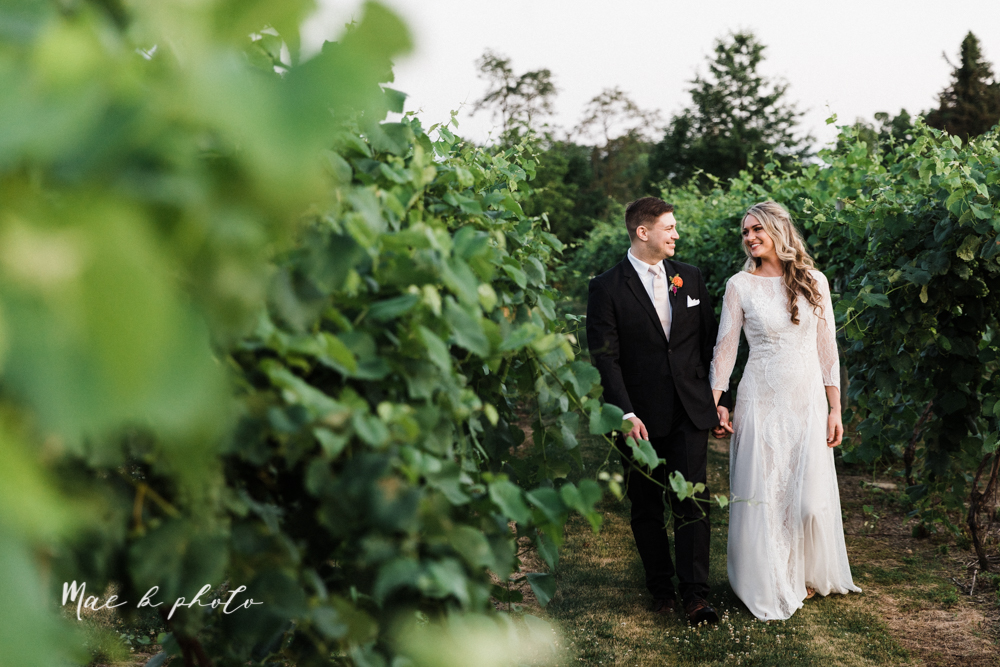 courtney and andy's elegant vintage summer vineyard wedding at the vineyards at pine lake in columbiana ohio photographed by youngstown wedding photographer mae b photo-444.jpg