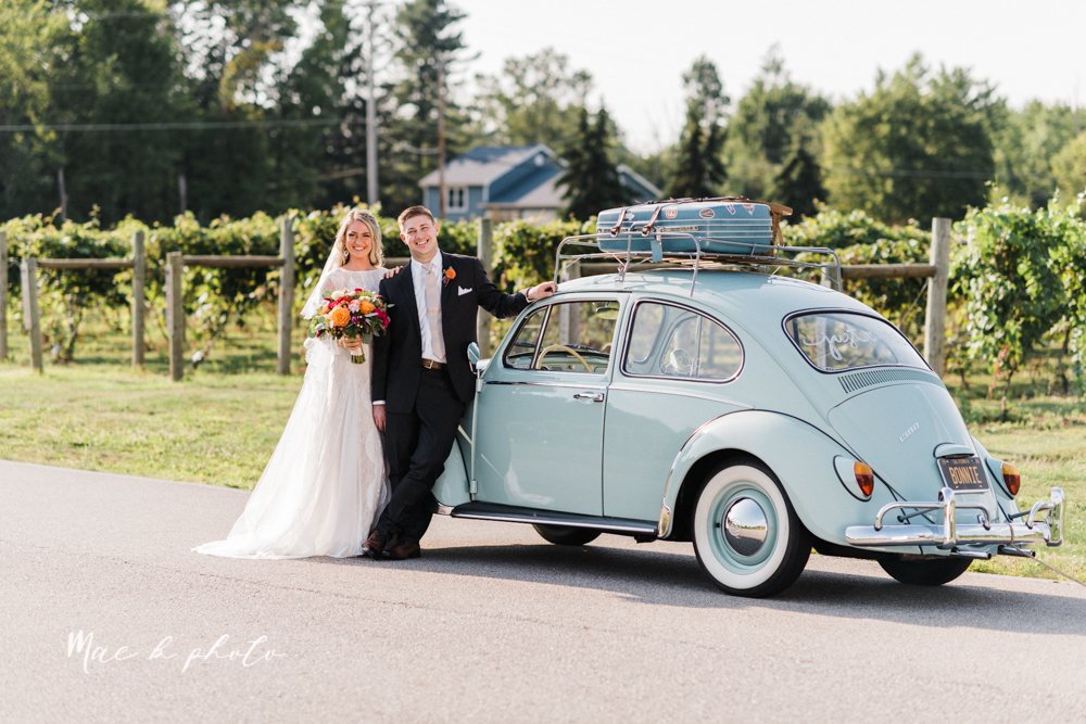 courtney and andy's elegant vintage summer vineyard wedding at the vineyards at pine lake in columbiana ohio photographed by youngstown wedding photographer mae b photo-141.jpg