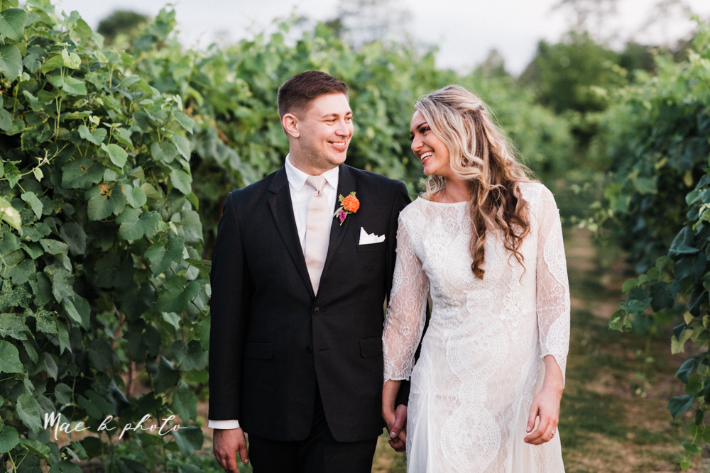 courtney and andy's elegant vintage summer vineyard wedding at the vineyards at pine lake in columbiana ohio photographed by youngstown wedding photographer mae b photo-189.jpg