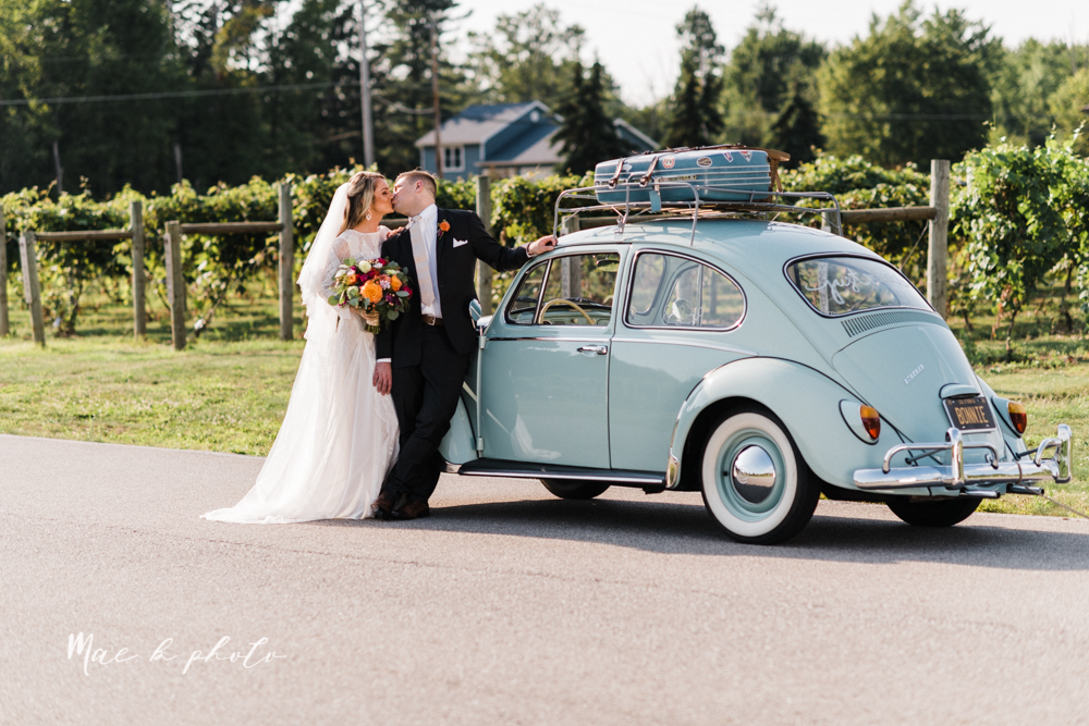 courtney and andy's elegant vintage summer vineyard wedding at the vineyards at pine lake in columbiana ohio photographed by youngstown wedding photographer mae b photo-143.jpg