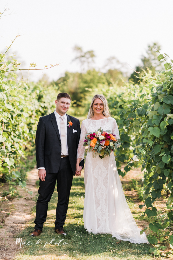 courtney and andy's elegant vintage summer vineyard wedding at the vineyards at pine lake in columbiana ohio photographed by youngstown wedding photographer mae b photo-154.jpg
