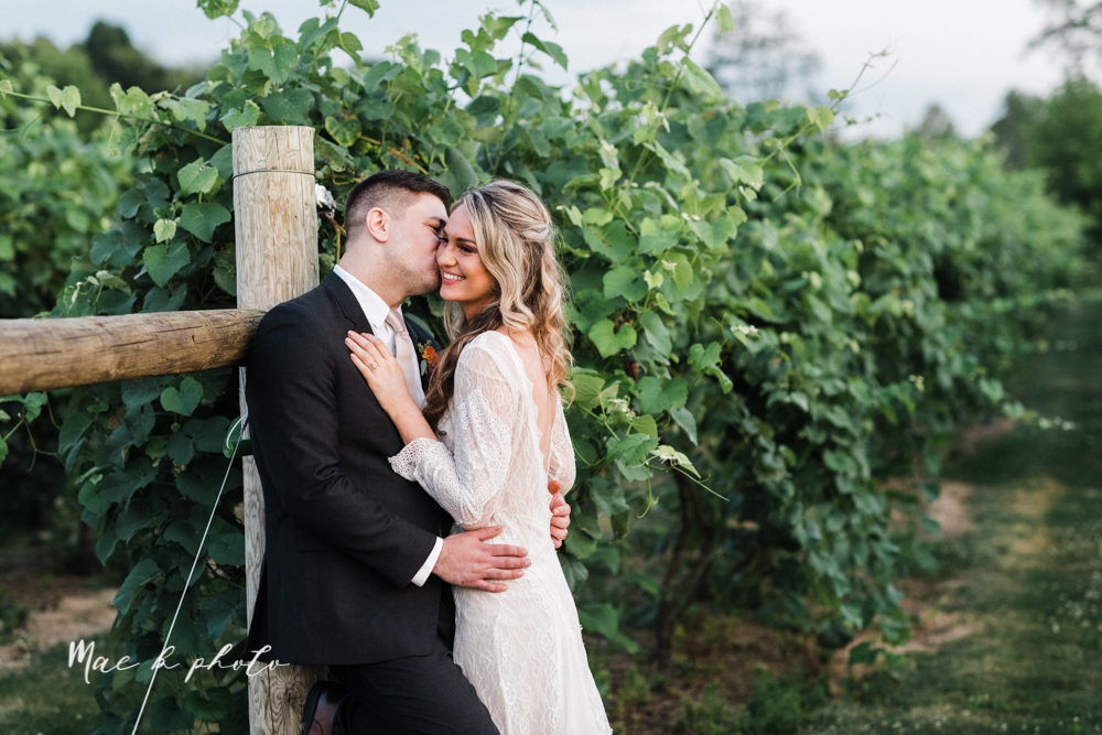 courtney and andy's elegant vintage summer vineyard wedding at the vineyards at pine lake in columbiana ohio photographed by youngstown wedding photographer mae b photo-182.jpg