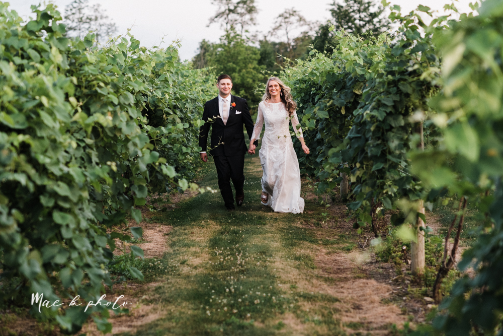 courtney and andy's elegant vintage summer vineyard wedding at the vineyards at pine lake in columbiana ohio photographed by youngstown wedding photographer mae b photo-190.jpg