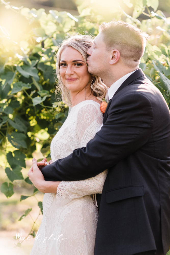 courtney and andy's elegant vintage summer vineyard wedding at the vineyards at pine lake in columbiana ohio photographed by youngstown wedding photographer mae b photo-162.jpg