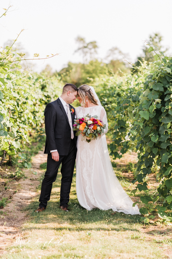 courtney and andy's elegant vintage summer vineyard wedding at the vineyards at pine lake in columbiana ohio photographed by youngstown wedding photographer mae b photo-158.jpg