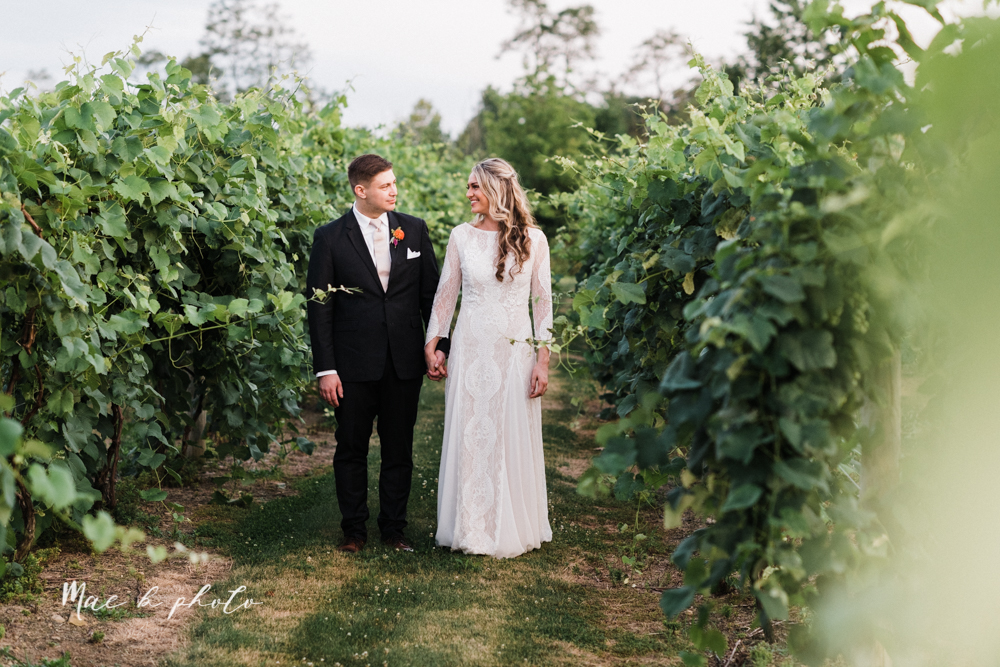 courtney and andy's elegant vintage summer vineyard wedding at the vineyards at pine lake in columbiana ohio photographed by youngstown wedding photographer mae b photo-186.jpg