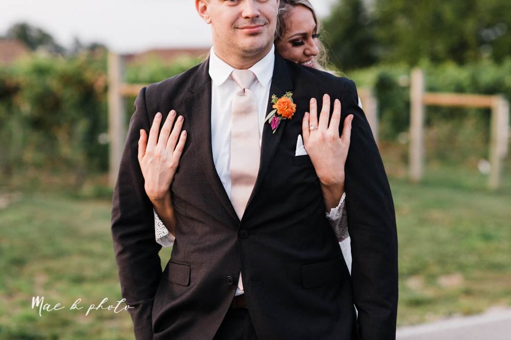 courtney and andy's elegant vintage summer vineyard wedding at the vineyards at pine lake in columbiana ohio photographed by youngstown wedding photographer mae b photo-199.jpg