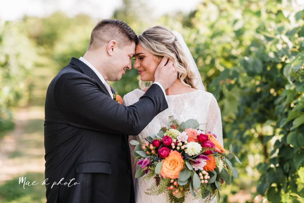 courtney and andy's elegant vintage summer vineyard wedding at the vineyards at pine lake in columbiana ohio photographed by youngstown wedding photographer mae b photo-159.jpg