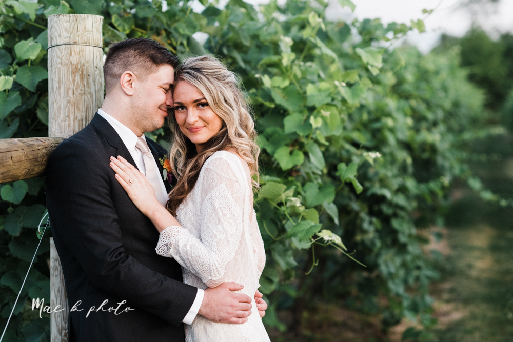 courtney and andy's elegant vintage summer vineyard wedding at the vineyards at pine lake in columbiana ohio photographed by youngstown wedding photographer mae b photo-183.jpg
