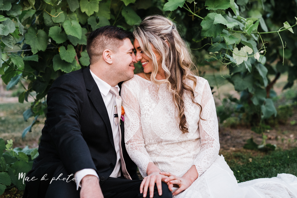 courtney and andy's elegant vintage summer vineyard wedding at the vineyards at pine lake in columbiana ohio photographed by youngstown wedding photographer mae b photo-193.jpg