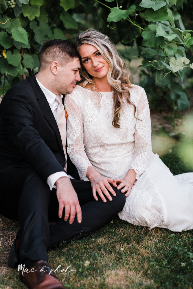 courtney and andy's elegant vintage summer vineyard wedding at the vineyards at pine lake in columbiana ohio photographed by youngstown wedding photographer mae b photo-195.jpg