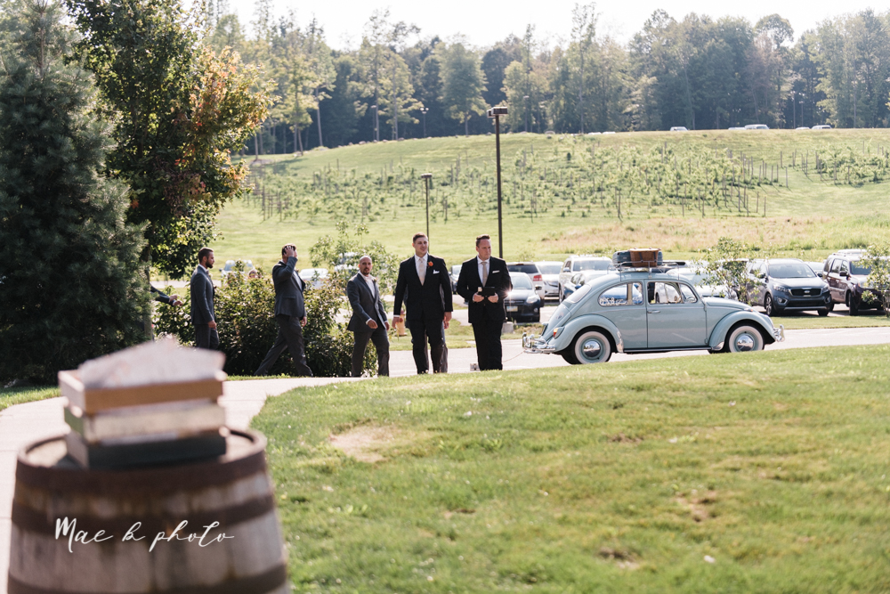 courtney and andy's elegant vintage summer vineyard wedding at the vineyards at pine lake in columbiana ohio photographed by youngstown wedding photographer mae b photo-122.jpg