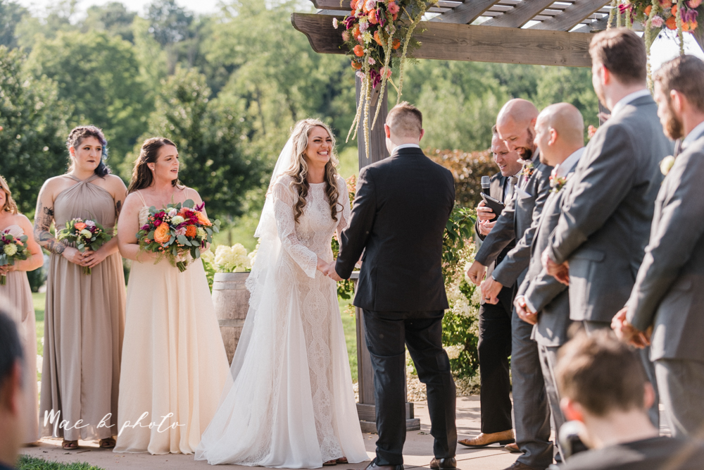 courtney and andy's elegant vintage summer vineyard wedding at the vineyards at pine lake in columbiana ohio photographed by youngstown wedding photographer mae b photo-130.jpg