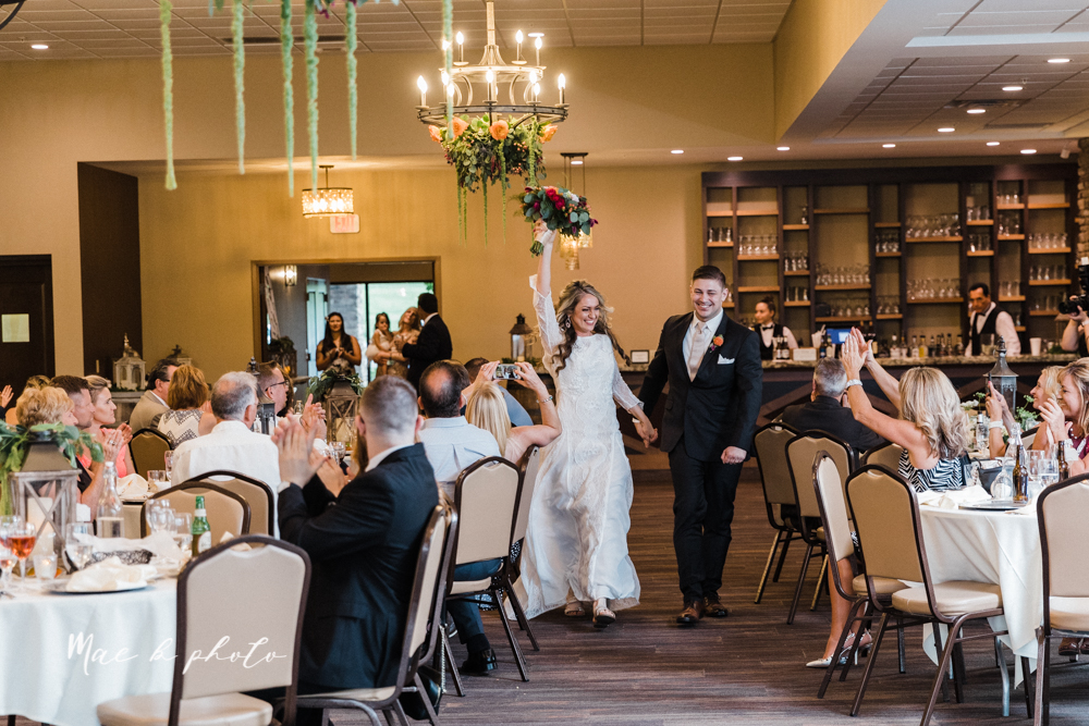 courtney and andy's elegant vintage summer vineyard wedding at the vineyards at pine lake in columbiana ohio photographed by youngstown wedding photographer mae b photo-440.jpg