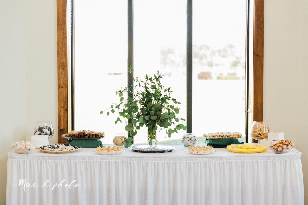 christina and michael's baseball themed midwest wedding at drake's landing and river's fellowside gardens in mill creek park in  youngstown ohio and holy family parish in poland ohio photographed by youngstown wedding photographer mae b photo-167.jpg