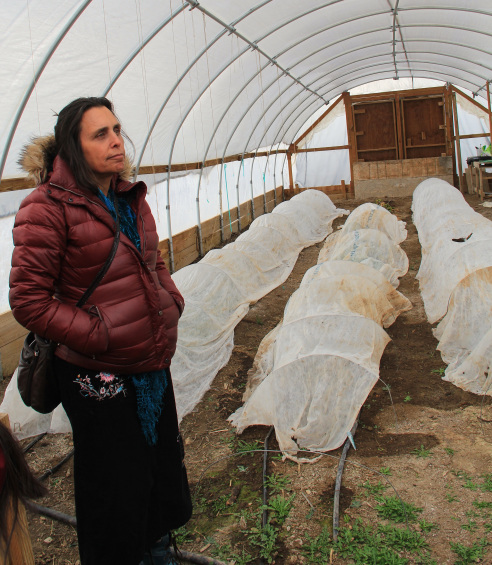 """Winona LaDuke (Honor the Earth; standing here in the TCEDC greenhouse), cited the value in the """"opportunity to be part of an international food movement. The opportunity to hang out with cool food people from around the world who are like us. In my experience I found that my international exposure was enlightening. When I sent people to Italy, they came back empowered about how cool our food was and we were as cool any as anybody in the world."""" Honor the Earth was also able to garner support for their pipeline opposition through hosting Slow Food dinners. (Photo by Elizabeth Hoover)"""
