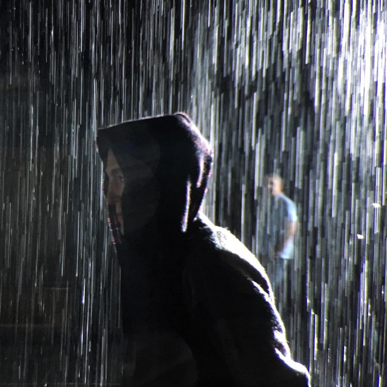 In the Rain Room