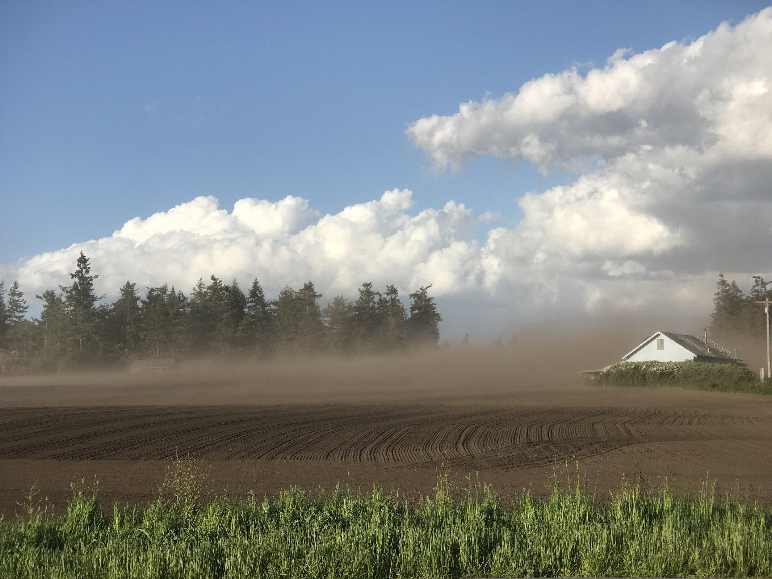 Wind  (Coupeville, WA)